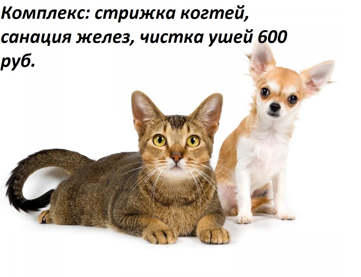 photo_165636